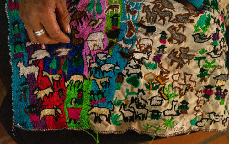 21 Women from Cocha Colorada seek sustainable development through Organic Fibers